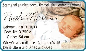 Noah Markus
