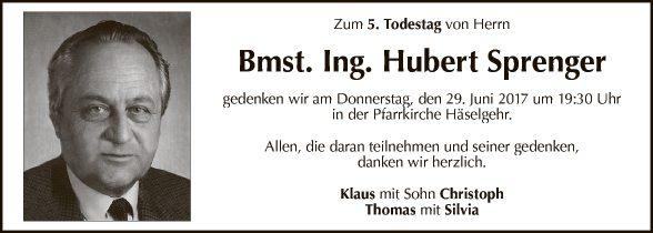 Ing. Hubert Sprenger