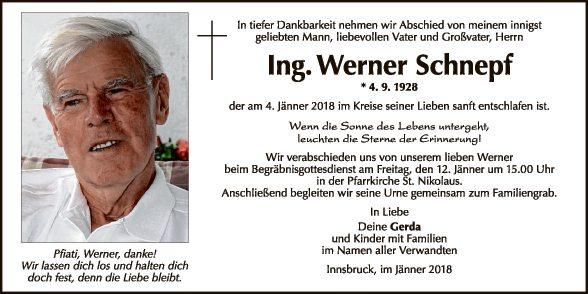 Ing. Werner Schnepf