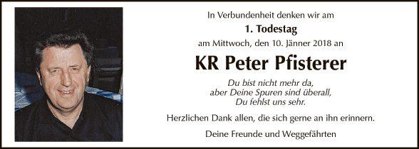 KR Peter Pfisterer