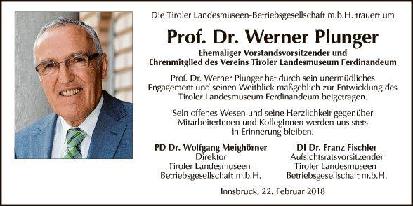 Werner Plunger