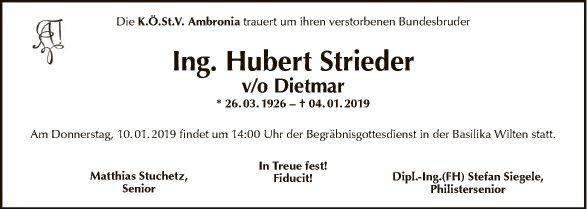 Ing. Hubert Strieder