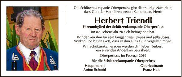 Herbert Triendl